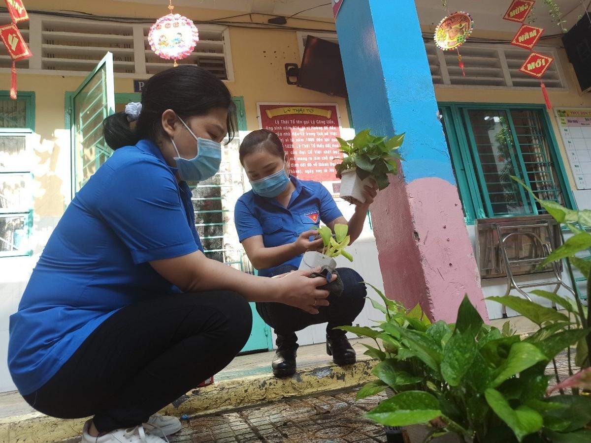 Giáo viên trường Tiểu học Trần Quang Khải, quận Gò Vấp, vệ sinh sân trường, chăm sóc cây cảnh. Ảnh: Lê Nam