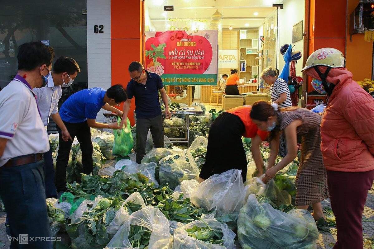 Người Đà Nẵng mua su hào, bắp cải giúp người dân Hải Dương. Ảnh: Nguyễn Đông.