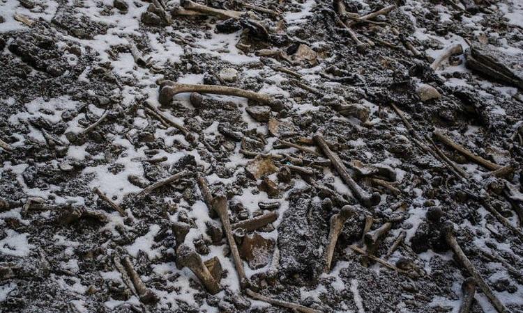 Những bộ xương rải rác trong lòng hồ Roopkund. Ảnh: Himadri Sinha Roy.