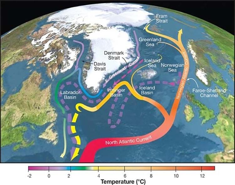 Hoàn lưu đảo lộn kinh tuyến Đại Tây Dương (AMOCC). Ảnh: USGCRP.