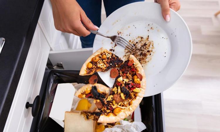 Lượng lớn thức ăn bị vứt bỏ trong các hộ gia đình mỗi năm. Ảnh: SciTechDaily.