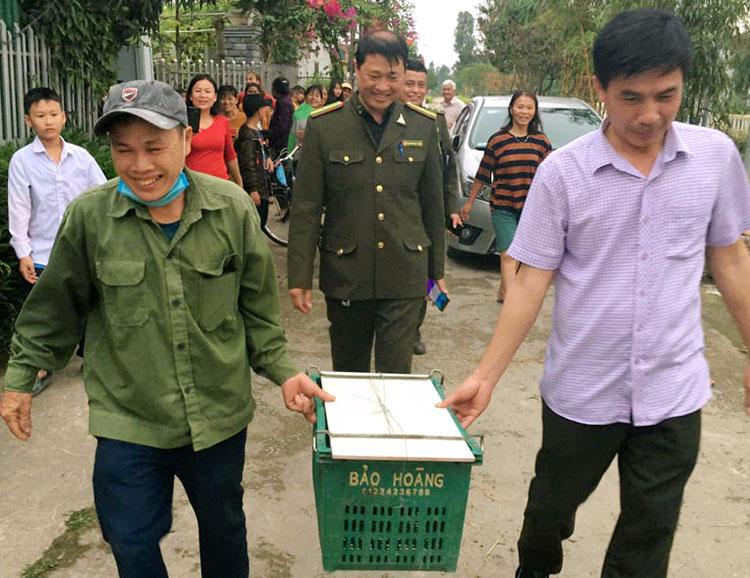 Lực lượng chức năng vận chuyển về trụ sở Hạt kiểm lâm huyện Can Lộc, chiều 5/3. Ảnh: Hùng Lê