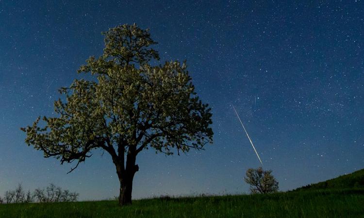 Các thiên thạch rơi xuống Trái Đất chứa đựng những thông tin khoa học quý giá. Ảnh: Peter Komka/EPA.
