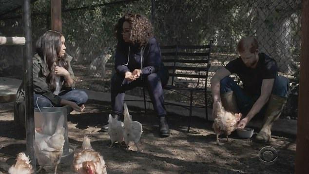 Vợ chồng Harry và Oprah Winfrey cho gà ăn ở California, trong cuộc phỏng vấn phát sóng hôm 7/3. Ảnh: CBS.