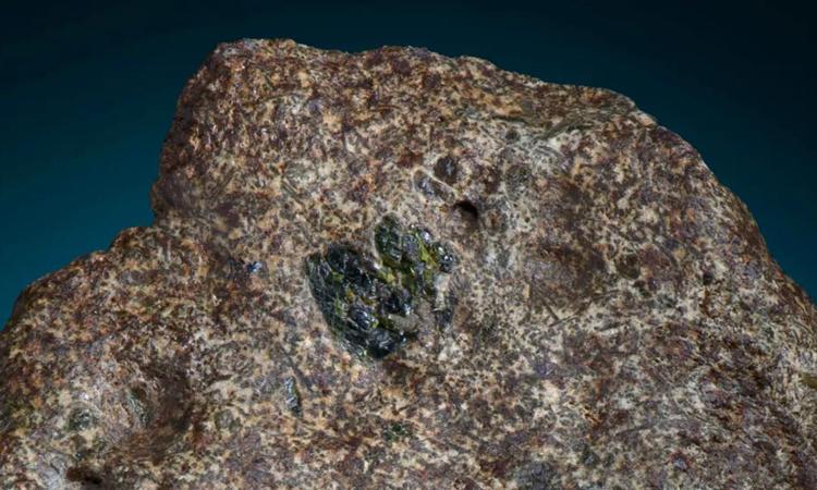 Thiên thạch Erg Chech 002 rơi xuống Algeria. Ảnh: Bảo tàng Đá quý và Khoáng vật Maine/Darryl Pitt.