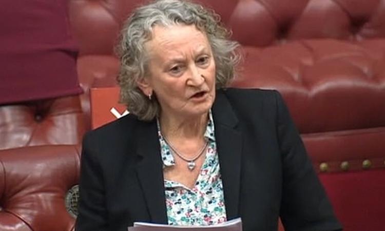 Nghị sĩ Baroness Jones trong cuộc họp ở Anh hôm 11/3. Ảnh: Daily Mail.
