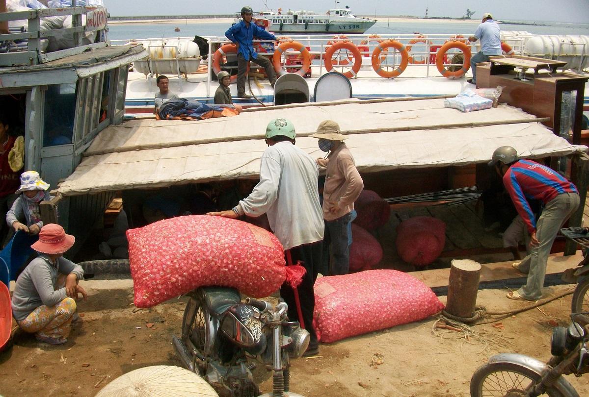 Người dân chở tỏi nơi khác về đảo Lý Sơn bằng tàu cá. Ảnh: Thạch Thảo.