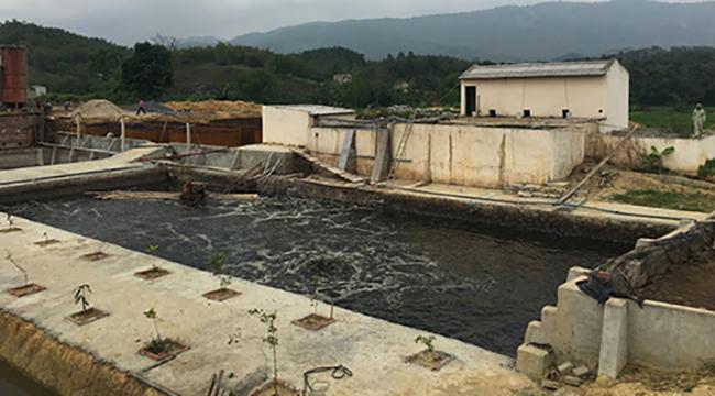 Hệ thống xử lý nước thải không đạt chuẩn của doanh nghiệp Tuấn Vinh. Ảnh: Lam Sơn.
