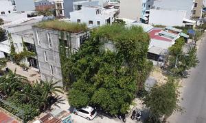 Văn phòng rộng 350 m2 phủ đầy cây xanh