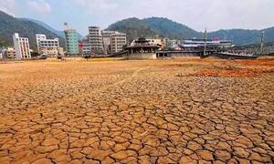 Hồ lớn nhất Đài Loan 'phơi đáy' vì hạn hán