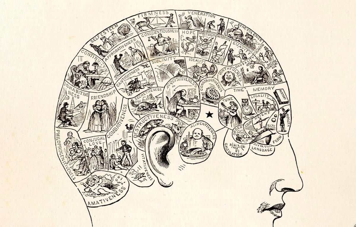 Thuyết não tướng học cho rằng bộ não được cấu tạo từ 27 bộ phận. Ảnh: Peoples Cyclopedia of Universal Knowledge.