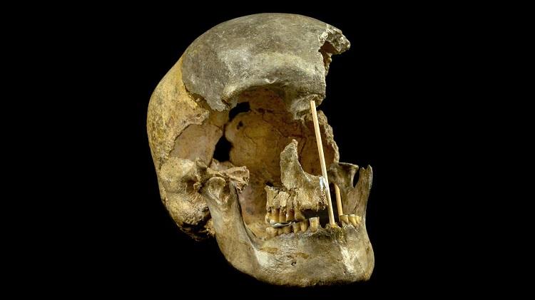 Hộp sọ 45 nghìn tuổi được tìm thấy trong hang động gần Praha, Cộng hòa Séc. Ảnh: Scitechdaily.