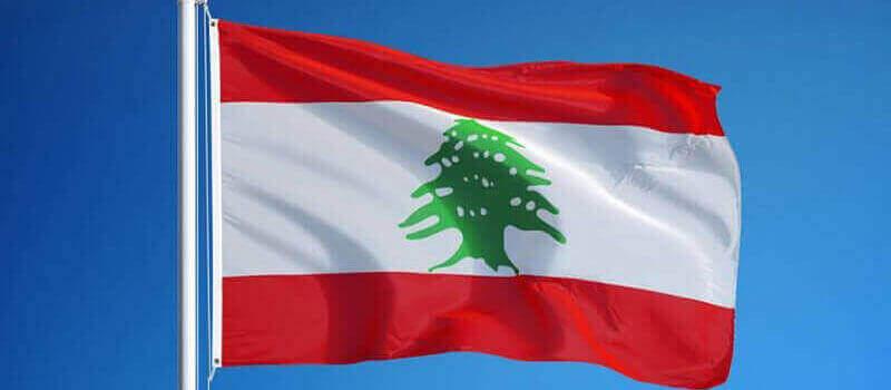 Quốc kỳ Lebanon có hình cây tuyết tùng màu xanh ở chính giữa dải màu trắng. Ảnh: Ederabia.