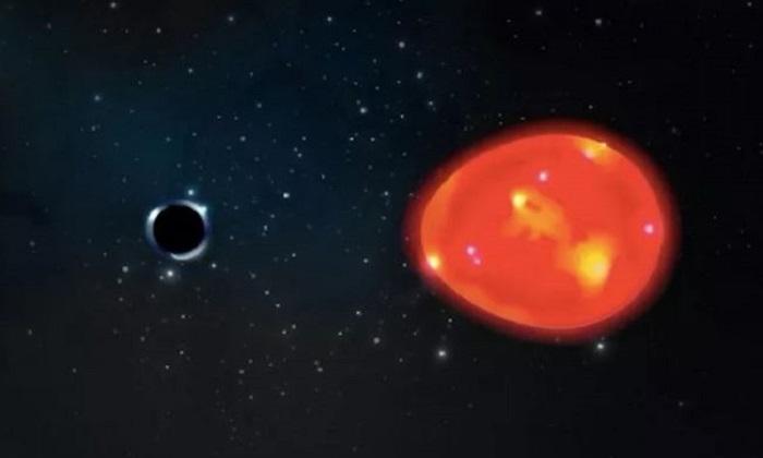 Mô phỏng hố đen Kỳ lân và sao khổng lồ đỏ trong hệ. Ảnh: Lauren Fanfer.