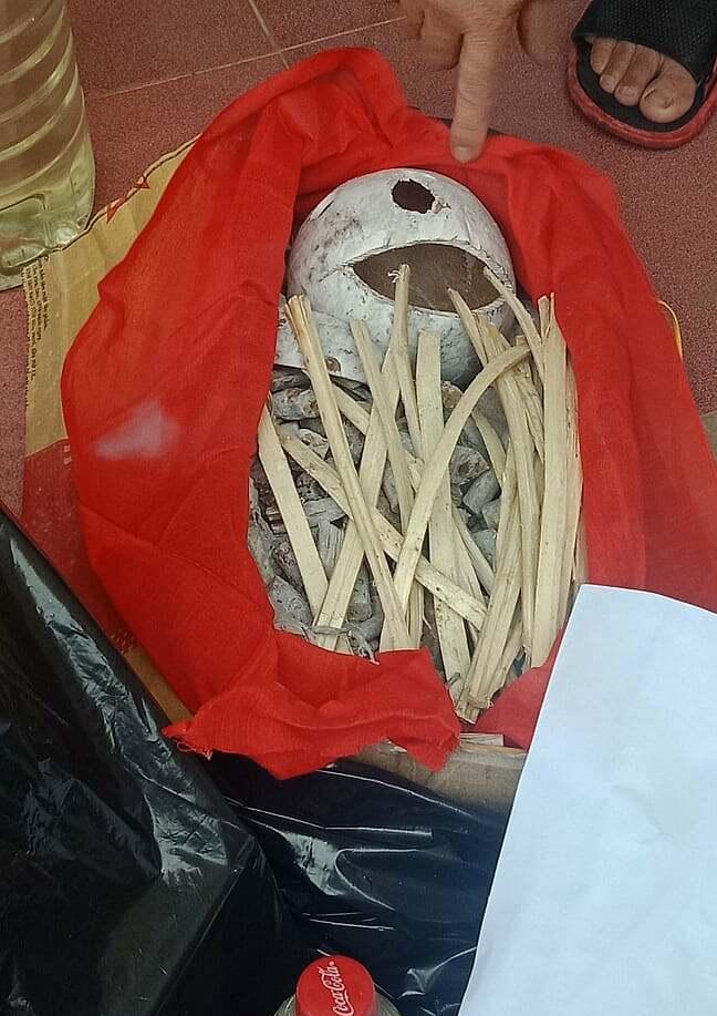 Hài cốt giả bằng sọ dừa, hom dâu được tìm thấy trong ngôi mộ giả ở Thiệu Lý. Ảnh: Lê Hoàng.