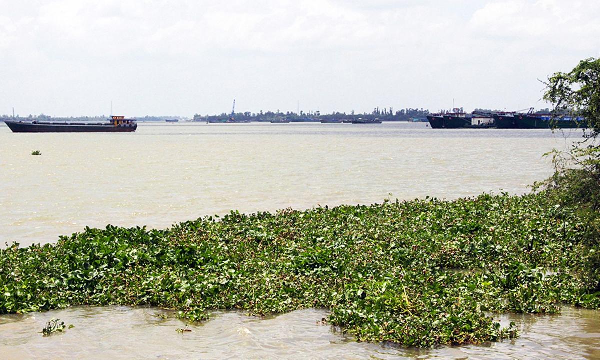Khu vực sông Tiền, huyện Chợ Mới, tỉnh An Giang, nơi có mỏ cát vừa trúng đấu giá. Ảnh: An Phú.