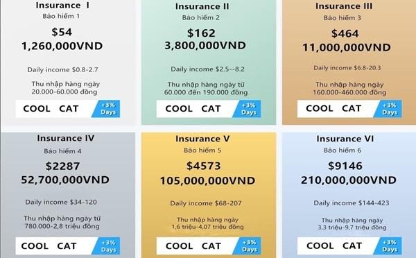 Coolcat bị tố cáo lừa hơn 200 tỷ đồng - 1