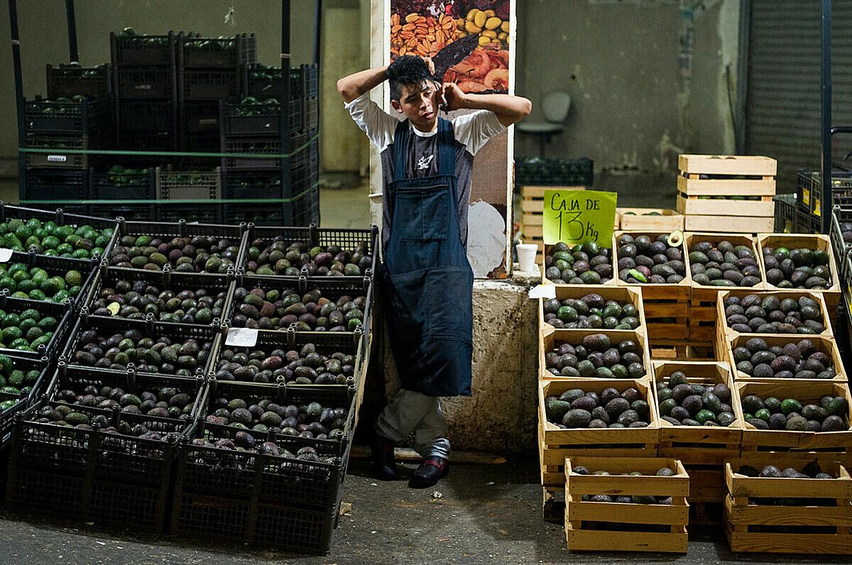 Sạp bán bơ ở thủ đô Mexico City. Ảnh: AP