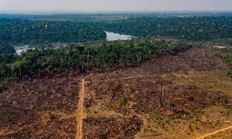 Một phần rừng Amazon ở Brazil bị lửa tàn phá. Ảnh: AFP.