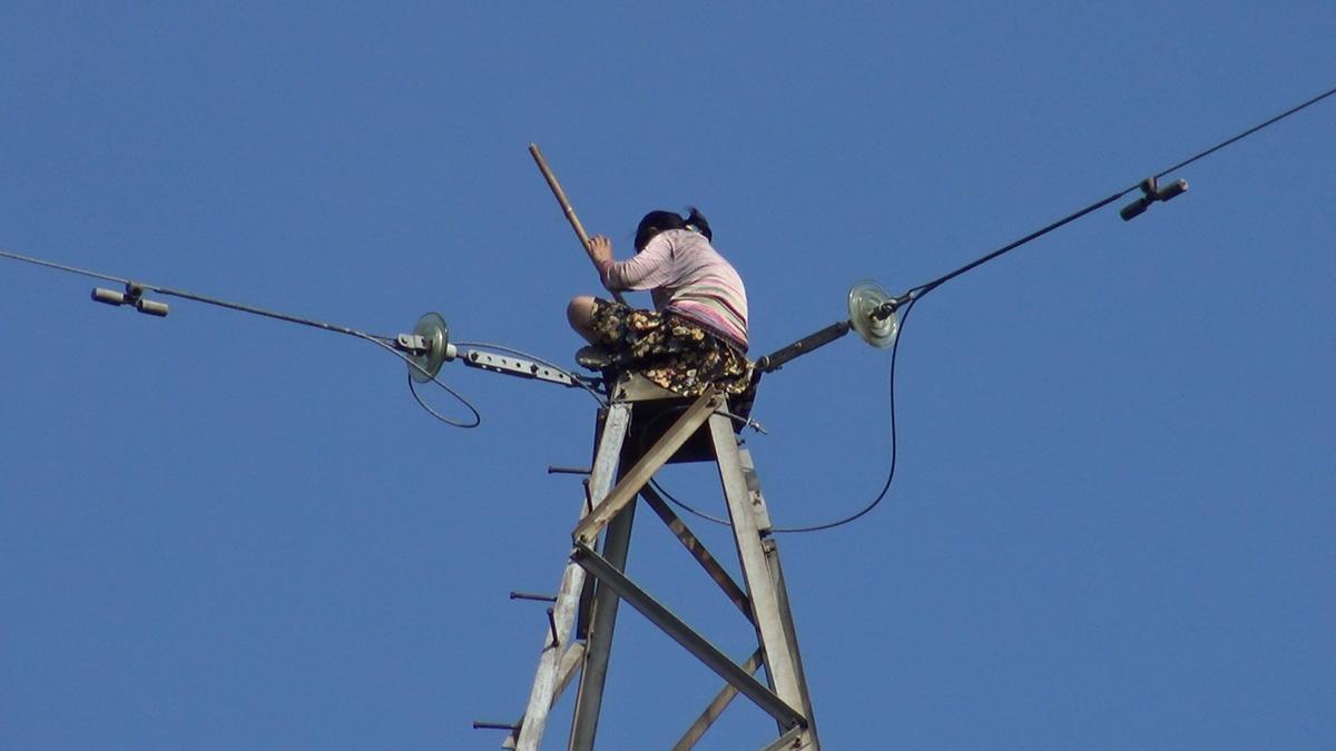 Cô gái ngồi trên đỉnh trụ điện cao thế cao 100 m. Ảnh: Đình Văn.