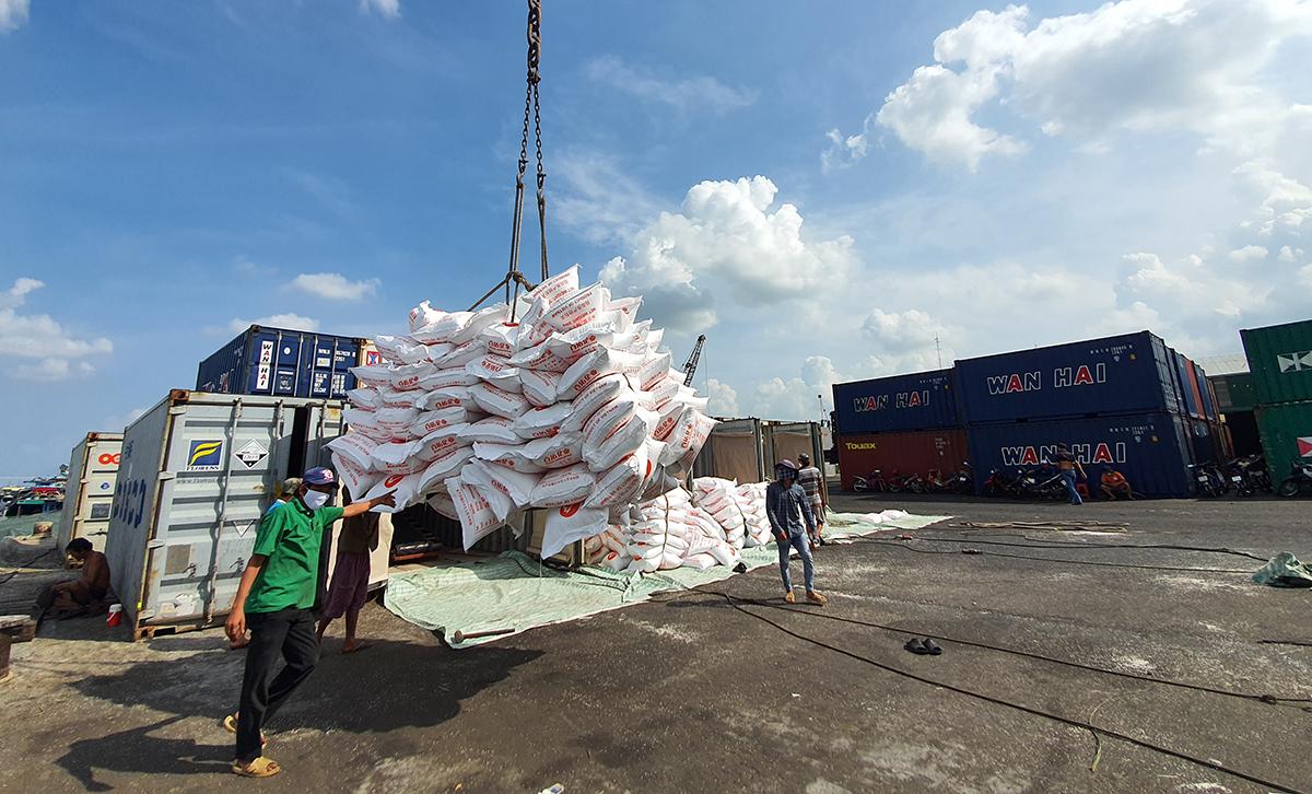 Bốc xếp gạo phục vụ xuất khẩu tại cản Mỹ Thới, trên sông Hậu, tỉnh An Giang. Ảnh: Cửu Long
