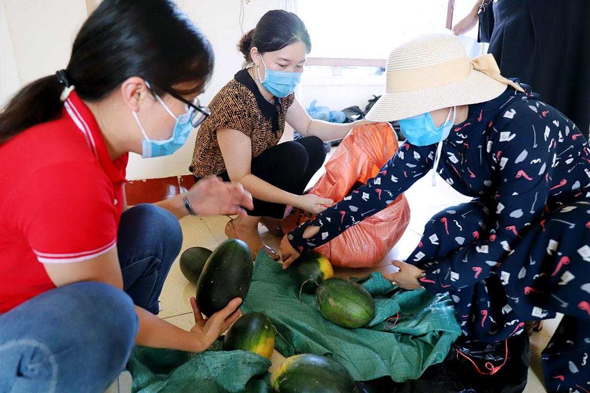 Cán bộ Hội liên hiệp phụ nữ Thạch Hà phân loại dưa để giao cho khách. Ảnh: Đức Hùng