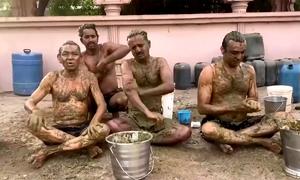 Tín đồ Ấn Độ nói về tắm phân bò ngăn Covid-19