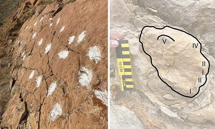 Các dấu chân được tìm thấy trên một con đường mòn ở hệ tầng Hanna. Ảnh: Anton Wroblewski.