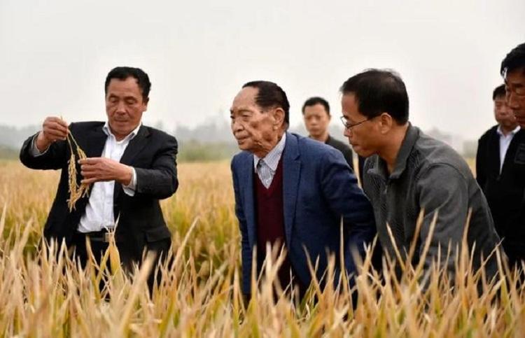 Ông Viên Long Bình (áo xanh) cùng nhóm nghiên cứu khảo sát năm 2017. Ảnh: CCTV.