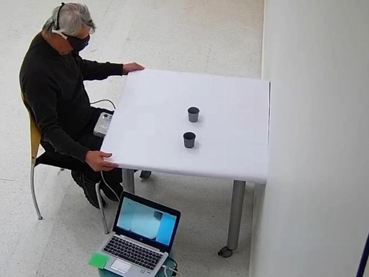 Bệnh nhân mù 58 tuổi định vị thành công vật thể trên bàn sau vài tháng điều trị. Ảnh: Jose-Alain Sahel.