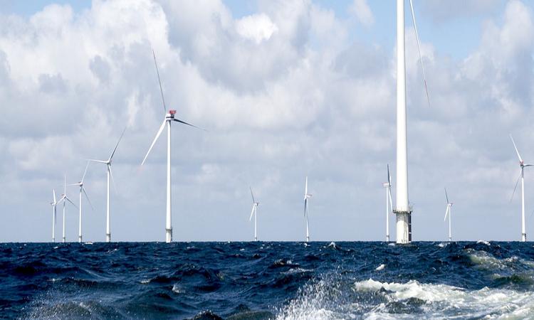 Dự án của HIP có công suất lên tới 10 GW. Ảnh: Offshore.