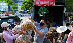 Bán hàng trăm tấn vải chín sớm giúp Bắc Giang