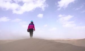 Người phụ nữ dành 16 năm phủ xanh sa mạc