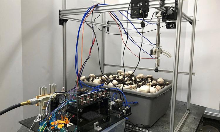 Robot hái nấm do nhóm nghiên cứu của Long He phát triển. Ảnh: Đại học Bang Pennsylvania.