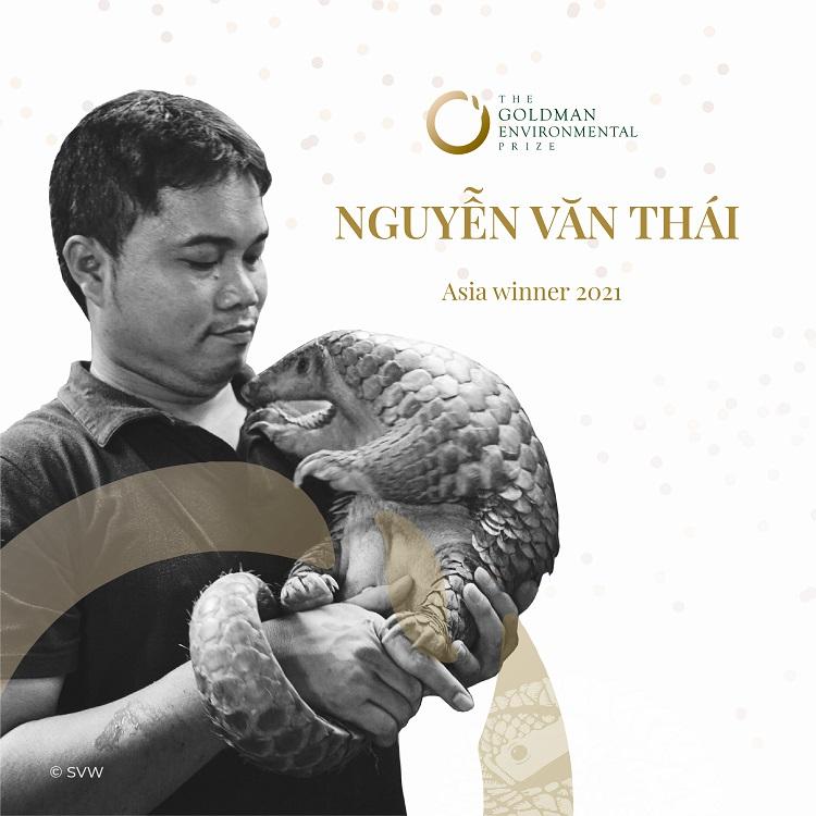 Ông Nguyễn Văn Thái có nhiều đóng góp trong bảo tồn động vật hoang dã nói chung và loài tê tê nói riêng. Ảnh: SVW.