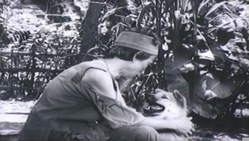 Tạo hình cậu Vàng trong một bộ phim. Ảnh cắt từ video.