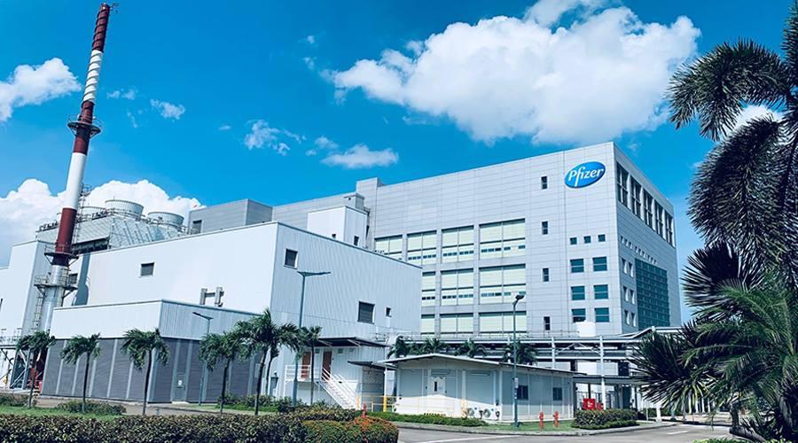 Nhà máy của Pfizer tại khu công nghệ y sinh Tuas của Singapore đã vận hành từ năm 2003. Ảnh: Pfizer Singapore.