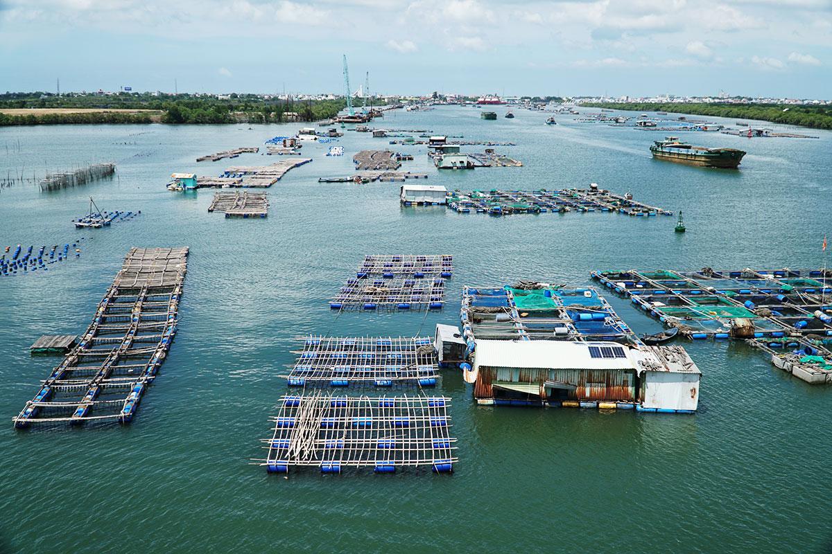 Bè nuôi hàu, cá trên sông Chà Và, xã Long Sơn. Ảnh: Trường Hà.