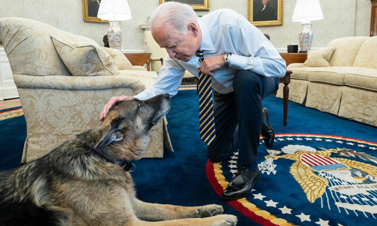 Tổng thống Joe Biden và chó cưng Champ ở Phòng Bầu dục tại Nhà Trắng hôm 24/2. Ảnh: Nhà Trắng.