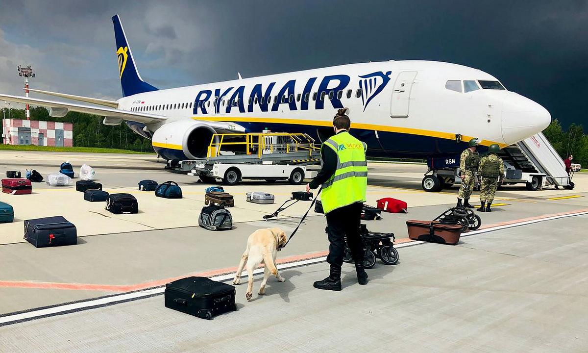 Chó nghiệp vụ kiểm tra hành lý sau khi máy bay Ryaniar hạ cánh tại Minsk hôm 23/5. Ảnh: AFP.