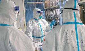 Nhà virus học khôi phục được dữ liệu gene nCoV ở Vũ Hán