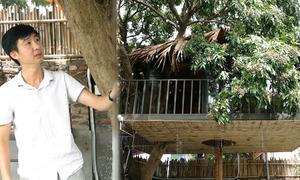 Ông bố chi trăm triệu dựng nhà trên cây cho con