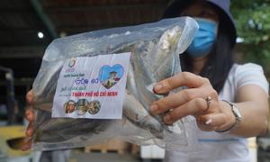 Người Quảng Bình góp 12 tấn cá tặng TP HCM