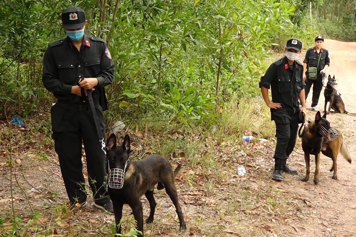 Chó nghiệp vụ được sử dụng để truy tìm Triển. Ảnh: Quang Văn
