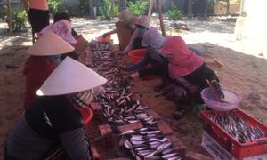 Cá kho, nông sản từ Huế gửi tặng người Sài Gòn trong dịch