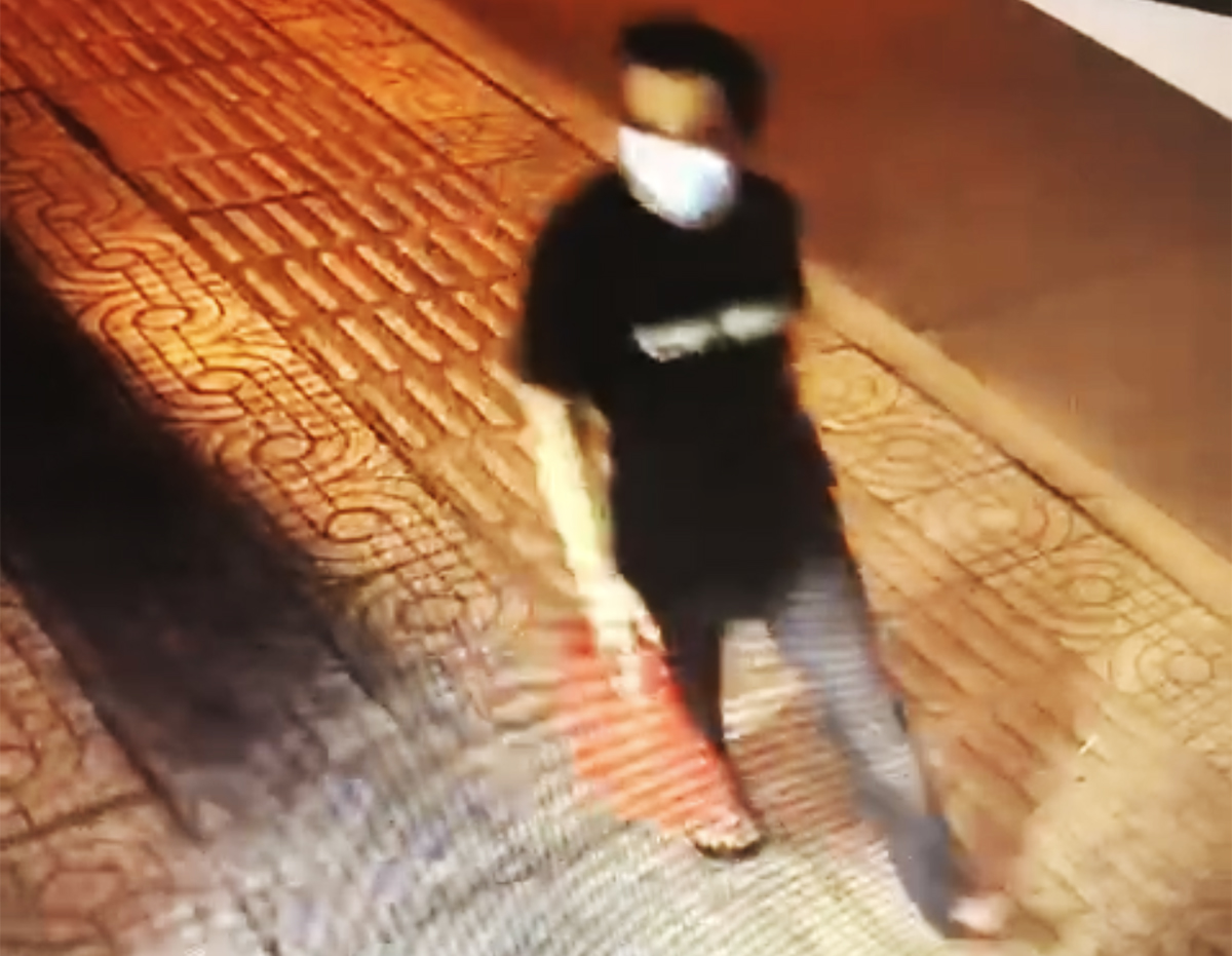 An đi bộ trên đường. Ảnh: Camera an ninh.