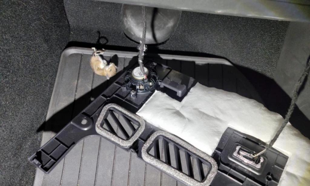 Con chuột rơi ra khỏi hộc đựng găng khi chủ nhân của chiếc Tesla Model 3 đưa xe đi sửa điều hòa. Ảnh: NYP