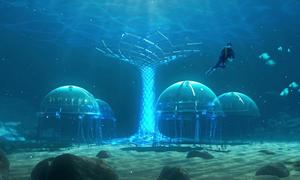 Trang trại trồng rau ở độ sâu 8 m dưới biển