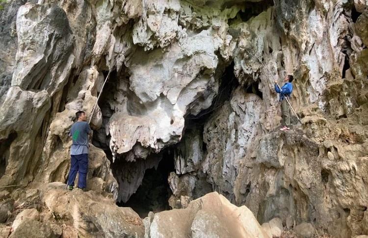 Nhóm tìm kiếm và thu thập các loài dơi trong một số hang động tỉnh Sơn La. Ảnh: CDC Sơn La.