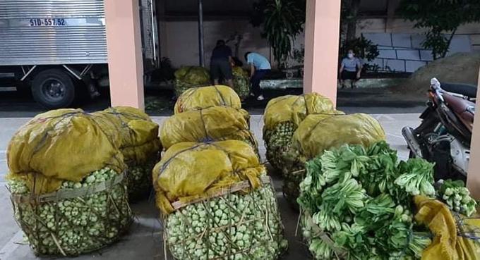 Một tấn rau cải thìa xin được từ Tiền Giang, cô Hương nhờ chuyển đến Hội Phụ nữ quận 8, công nhân và người lao động nghèo ở Hóc Môn. Ảnh: NVCC.